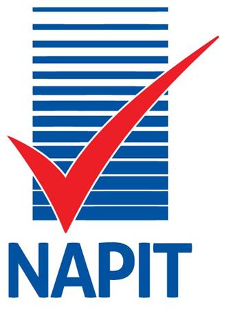 NAPIT logo image